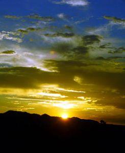 256px-Mustard_Blue_Sunset