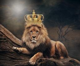 king-3832148_1920